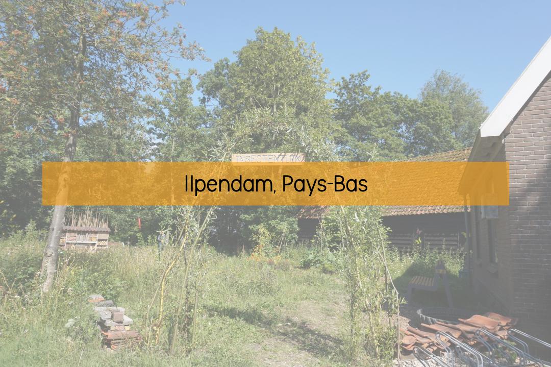 Ilpendam, Pays-Bas