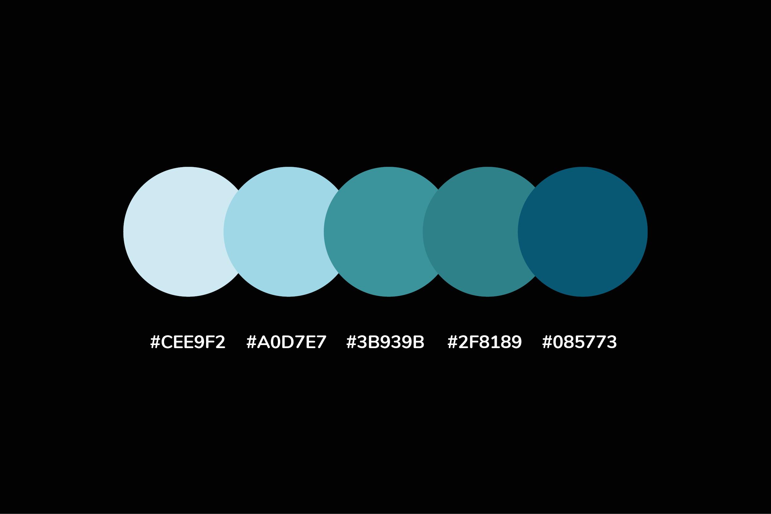 palette11