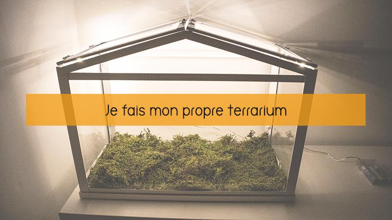banniere-faire-son-propre-terrarium
